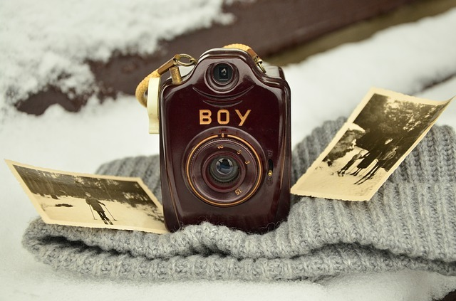 leather case camera sepia pictures
